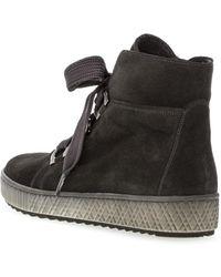 Gabor Halfhoge sneaker 93.760-19 taupe suéde Negro