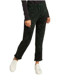 Majestic Filatures Zebra Pattern Velvet Trousers - Groen