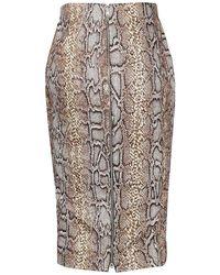 Victoria Beckham Skirt - Bruin