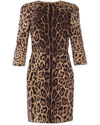 Dolce & Gabbana Abito stampato leopardato - Marrone