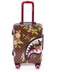 Sprayground Sharkflower Trolley - Marron