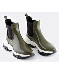 Lemon Jelly Bottines - Jayden shoes Verde