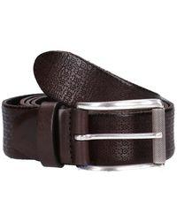 Anderson's Belt - Marrone