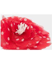 Philosophy Di Lorenzo Serafini Spilla bijoux Maxi Flower Rojo