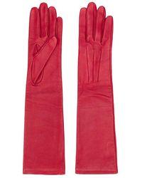 Lanvin Long Gloves - Rood