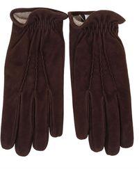 Eleventy Gloves - Bruin
