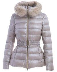 Herno Coat - Paars