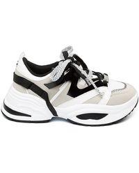 Steve Madden Sneakers - Wit