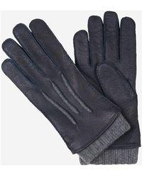 Santa Eulalia Leather Gloves - Blauw