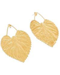 Medecine Douce Vitis Maxi Leaf Earrings - Geel
