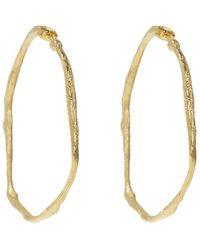 Forte Forte Round Earrings - Geel