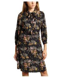Bellerose Hills Dress - Zwart