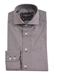 Cavallaro Overhemd - Bruin