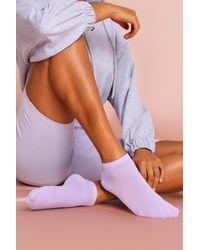 MissPap Basic Trainer Sock Multipack - Purple