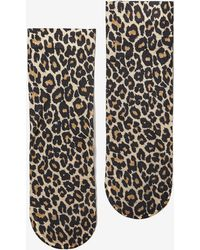 Miss Selfridge Nylon Leopard Print Socks - Multicolour