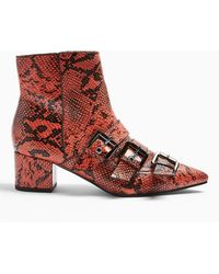 Miss Selfridge Bowy Red Multi Buckle Snake Print Boots