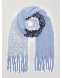 Miss Selfridge Blue Joelle Stripe Print Scarf