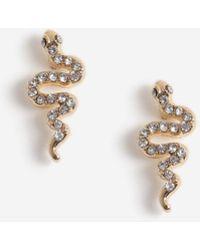 Miss Selfridge - Gold Snake Design Earrings - Lyst