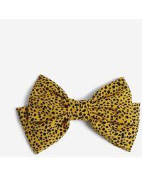 Miss Selfridge Yellow Leopard Print Bow Barrette Bow Tie