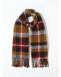 Miss Selfridge - Blue Camel Checked Scarf - Lyst
