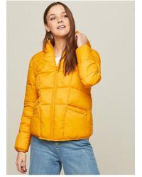 Miss Selfridge - Ochre Lightweight Puffer Jacket - Lyst