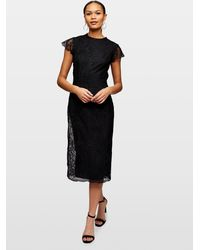Miss Selfridge Black Ao Lace Midi Dress