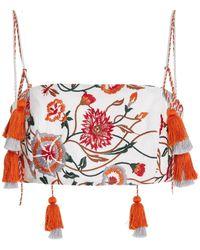 Silvia Tcherassi Fresco Embroidered Cotton-blend Crop Top - Multicolour