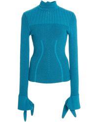 Carolina Herrera Plaited Ribbed Knit Turtleneck - Blue