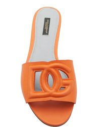 Dolce & Gabbana Bianca Logo-detailed Leather Slides - Orange