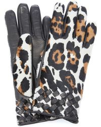 Bottega Veneta Leopard-print Leather Gloves - Multicolor