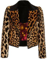 Alix Of Bohemia Julie Leopard Velvet Moto Jacket - Brown