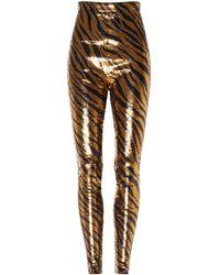 Balenciaga Sequined Zebra-print Leggings - Multicolor