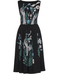 Lena Hoschek Magic Of Spring Dress - Black