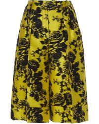 Erdem Rohna Knee Length Jacquard Shorts - Multicolor