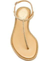 Rene Caovilla Crystal-embellished Satin Sandals - Metallic