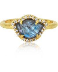 Amrapali Nalika Lotus 18k Yellow-gold, Labradorite, And Diamond Ring - Blue