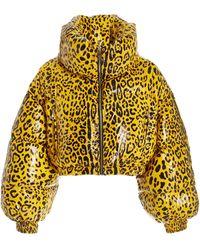 Dolce & Gabbana Leopard-printed Satin Down Puffer Jacket - Yellow