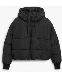 Monki Cropped Puffer Jacket - Black
