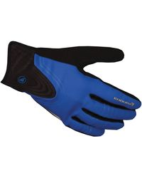 Endura Windchill Glove - Blue