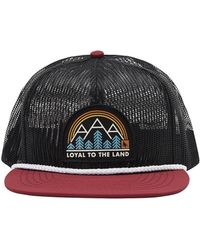 HippyTree Prism Hat - Black