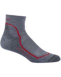 Icebreaker - Hike+ Light Mini Sock - Lyst