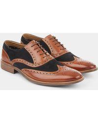 Moss London - Benson Brown & Navy Contrast Oxford Shoe - Lyst