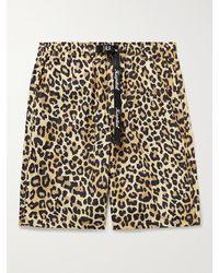 Kapital Wide-leg Leopard-print Poplin Shorts - Multicolour