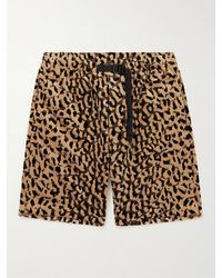 Wacko Maria Belted Leopard-print Cotton-velour Shorts - Brown