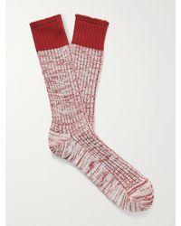 MR P. Ribbed Mélange Cotton-blend Socks - Orange