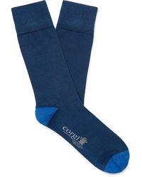 Kingsman Corgi Colour-block Cotton-blend Socks - Blue