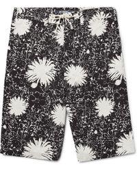 Junya Watanabe - Printed Voile Shorts - Lyst