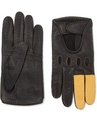 CONNOLLY Goodwood Full-grain Leather Driving Gloves - Black