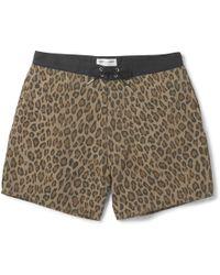 Saint Laurent Leopard-print Mid-length Swim Shorts - Brown