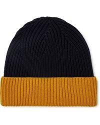 Altea Color Block Ribbed Hat - Blue